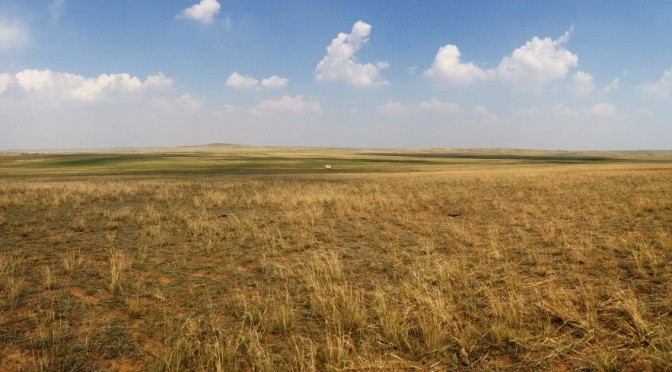 Inner Mongolia: Xilamuren Grasslands (Day 2)