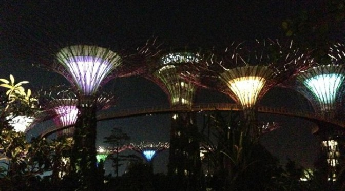 Singapore: Gardens By The Bay (Evening)